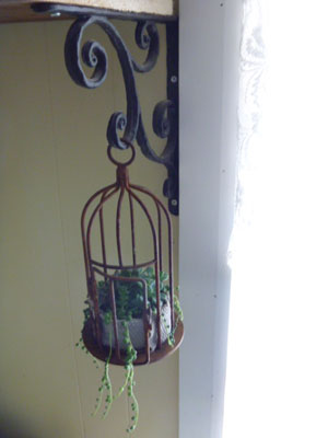Rustic Birdcage with succulents