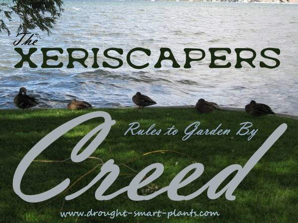 The Xeriscapers Creed - Rules to Garden By...