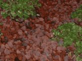 Lava Rock Mulch