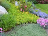 Buy Flower Garden Plans here; click the picture