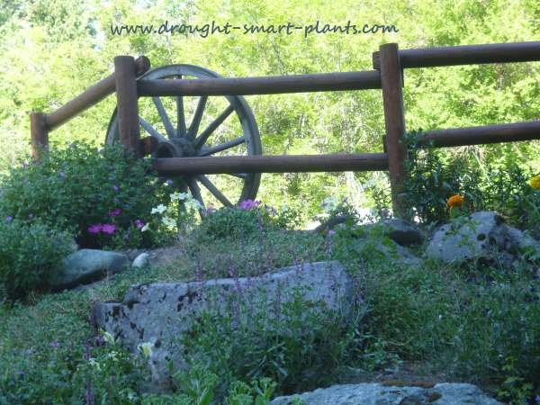 Wagon wheels and rustic fencing
