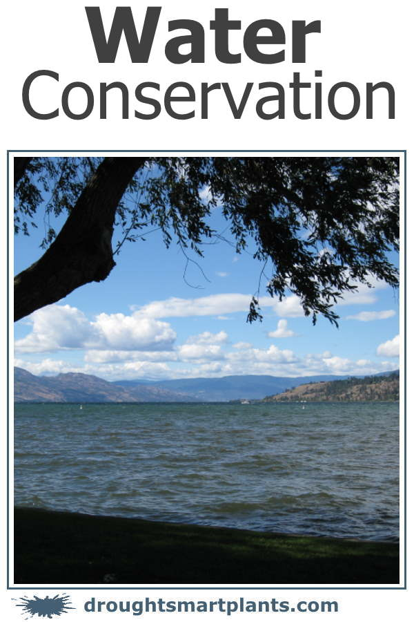 Water Conservation - one day, there may not be more where that came from...