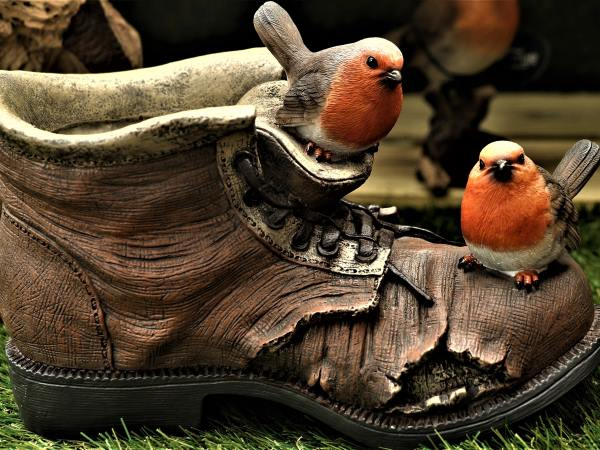 Fun Birds on a Boot