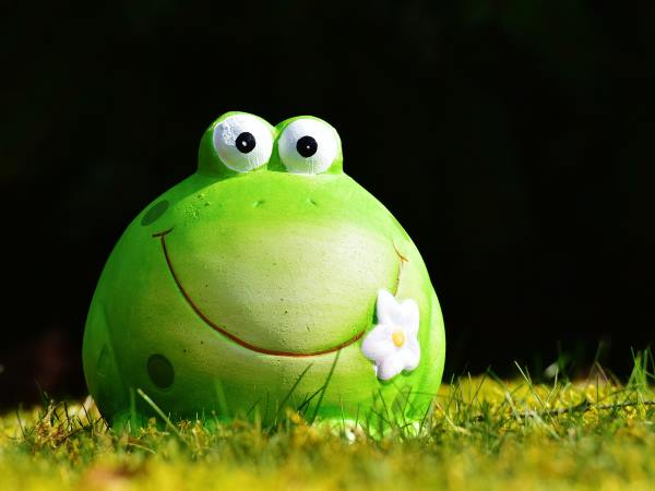 Whimsical Green Frog