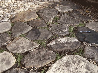 Patio of flat rocks planted with Thymus 'Elfin'