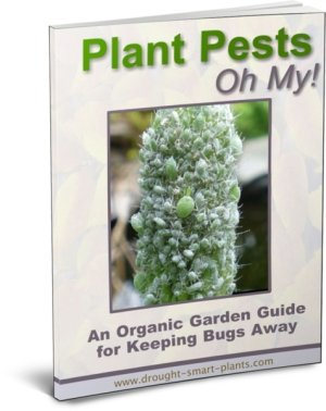 A Picture of Plant Pests E-Book