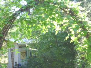 find out more about Twig Archways