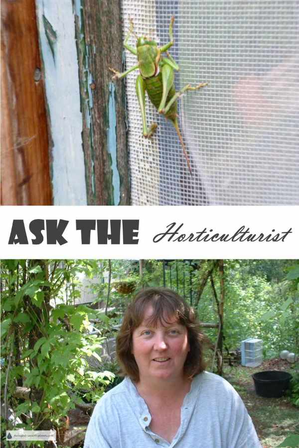 Ask the Horticulturist