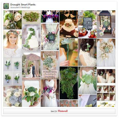 See more great succulent wedding ideas here!
