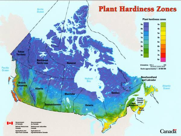 Plant Hardiness Zones in Canada