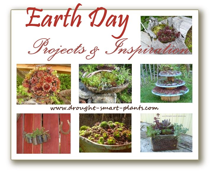 Earth Day Projects & Inspiration...