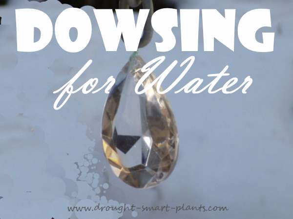 Dowsing for Water...