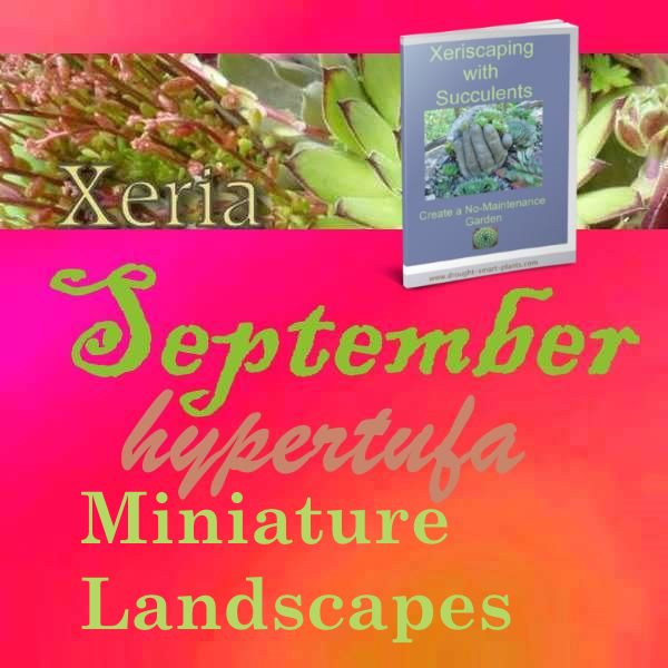 Xeria Issue 64 - September 2014