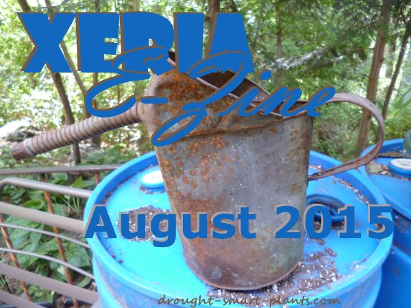 Xeria Issue 75 - August 2015