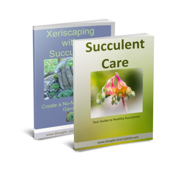 Buy the Xeriscaping with Succulents E-Book and the Succulent Care Handbook together...