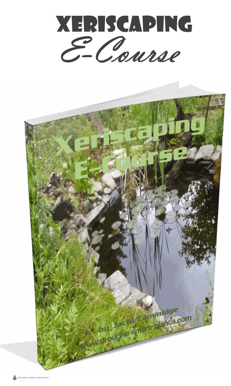 Xeriscaping E-Course - download your copy here...