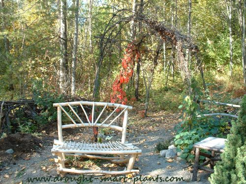 Pull up a rustic bench, sit and enjoy the show