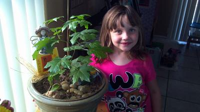 Granddaughter Erin with her Maple sapling.