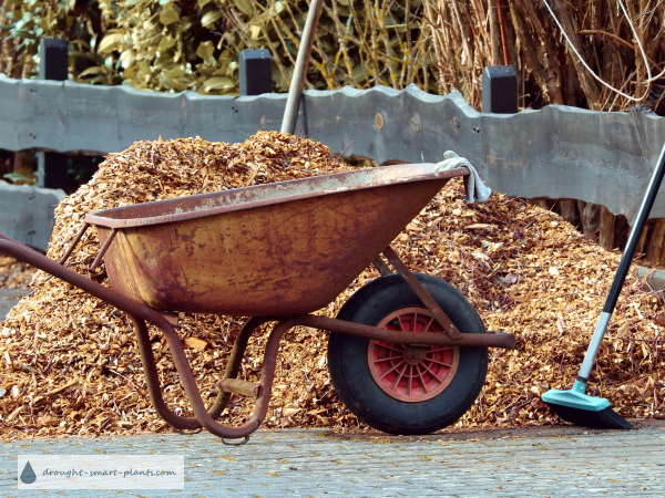 What's the right kind of mulch?