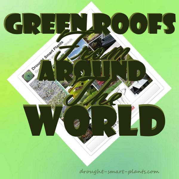 Green Roofs from Around the World