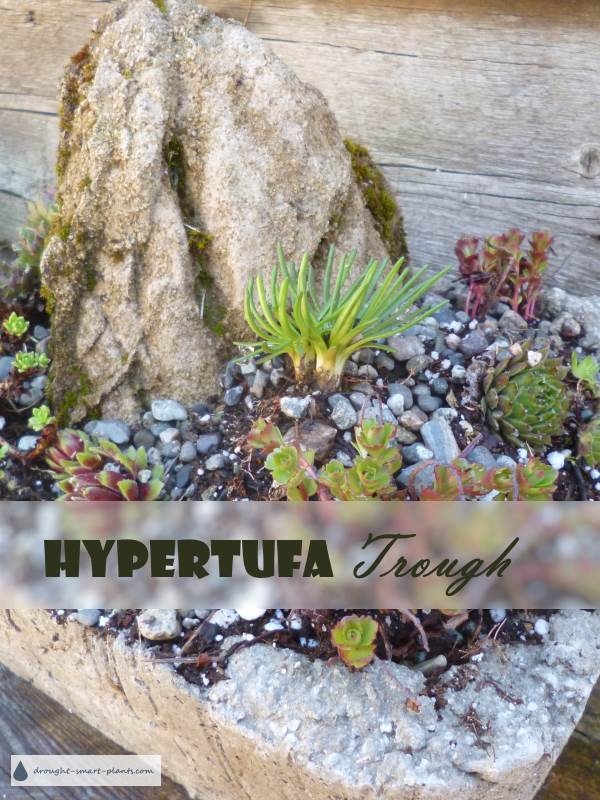 Hypertufa Trough