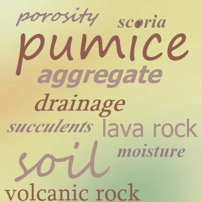 Soil includes many different materials; pumice adds drainage
