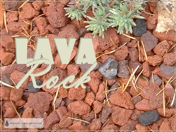Lava Rock, my favorite mulch