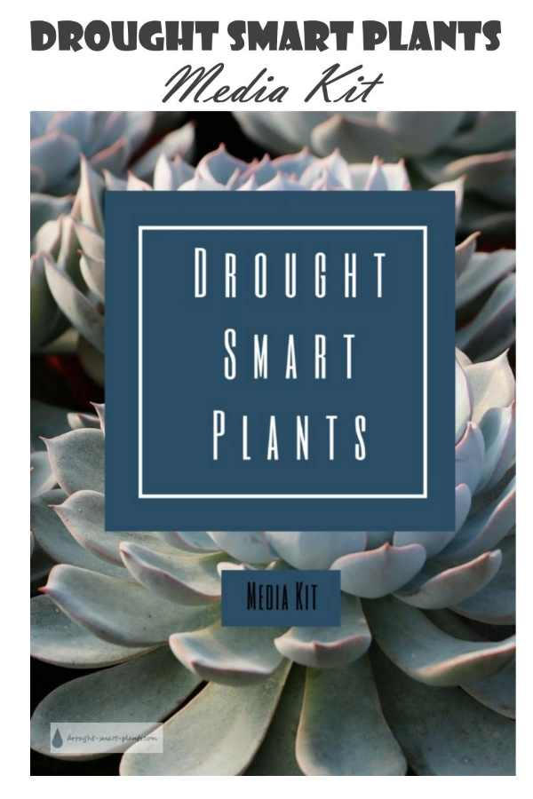 Advertise on Drought Smart Plants - use the media kit to make a decision