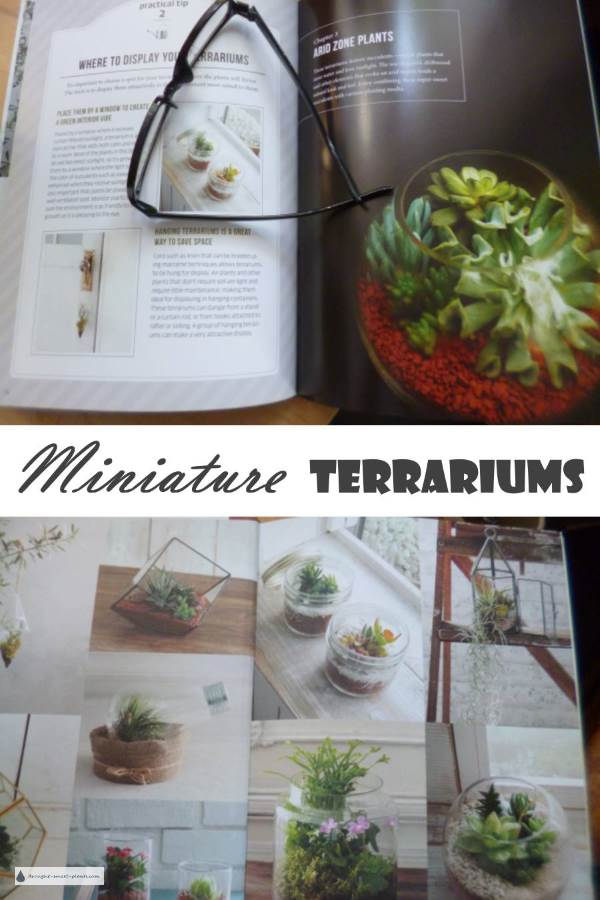 Miniature Terrariums - a book review
