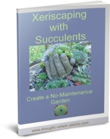 Buy the Xeriscaping with Succulents E-Book now...