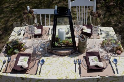 Table settings with moss and succulents