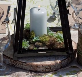 glass, candles and moss with Sempervivum
