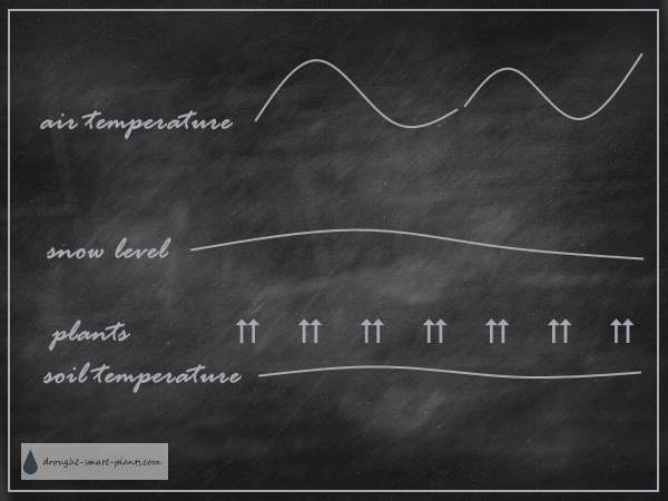 The difference between air temperature and soil temperature under the snow