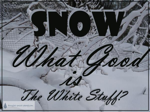 Snow - What Good Is The White Stuff?  Are there any benefits at all?