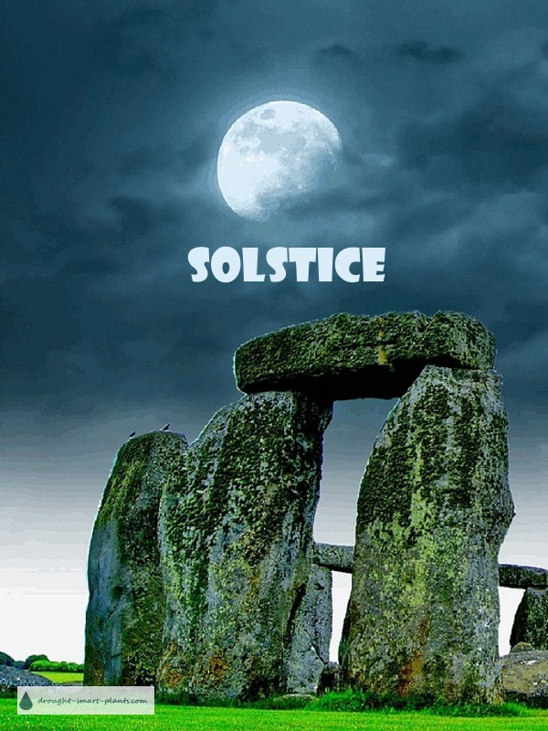 Solstice - the longest day of the year