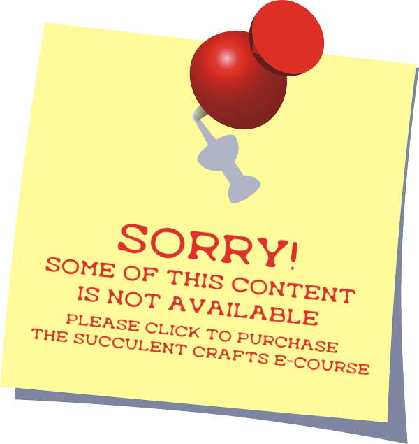 Sorry - this content no longer available as part of the Succulent Plant Business e-Course