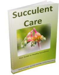 Succulent Care E-Book - Your Guide to Healthy Succulents