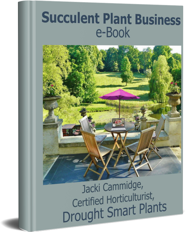 Buy the Succulent Plant Business e-Book