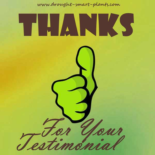 Kudos! Testimonials from visitors just like you...