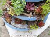 Renovating the Satellite Dish Planter