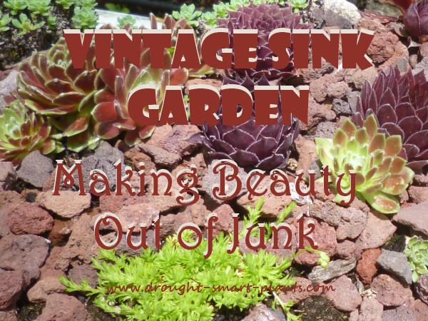 Vintage Sink Garden - making beauty out of junk