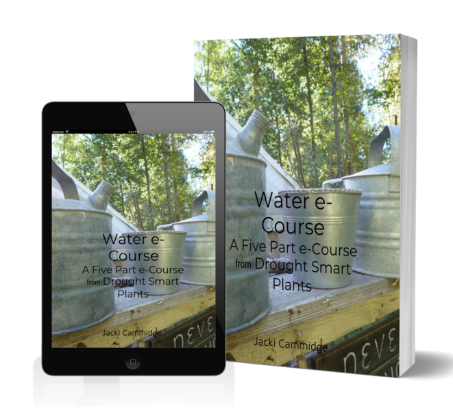 Five Part Free Water e-Course