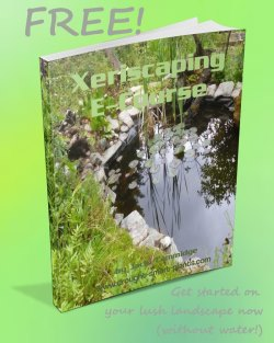 Get your FREE download of the Xeriscaping E-Course now...