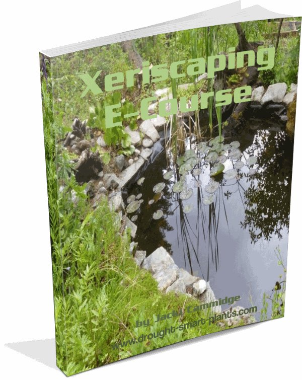 Xeriscaping e-Course