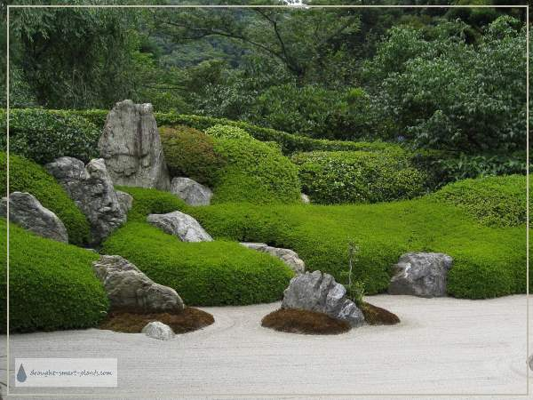 Zen Garden - raked gravel, beautiful rocks, lush plantings...